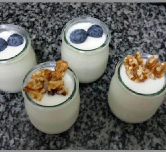 yogur de frutos secos